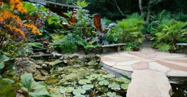 13 Tips on How to Create a Relaxing Garden